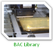 BAC Library
